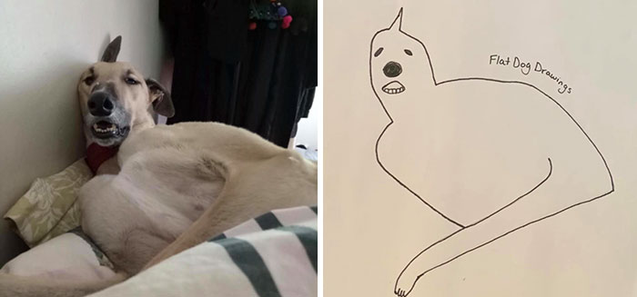 jay cartner flat dog doodles terrible sketches