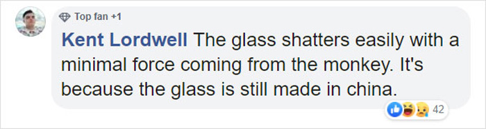 monkey breaks the glass enclosure comment kent