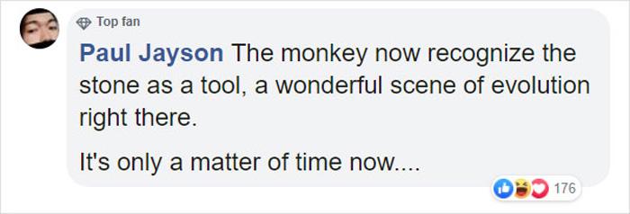 monkey breaks the glass enclosure comment paul