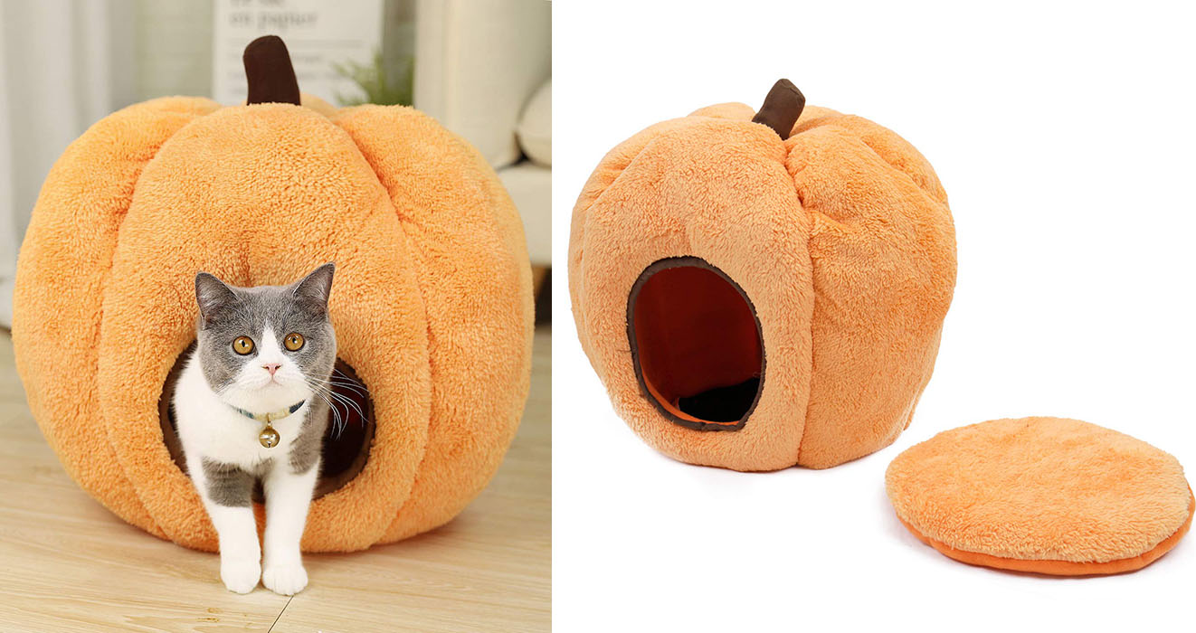 Picture of: Go All Out For Your Kitty This Halloween With A Pumpkin Cat Bed