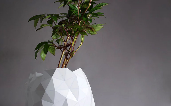 studio ayaskan shape-shifting pot growth