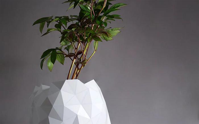 studio ayaskan shape-shifting pot growth
