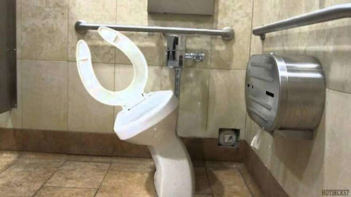 Weird Images Of Toilets 9