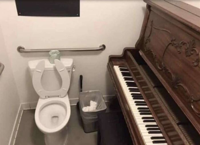 toilet for music enthusiasts