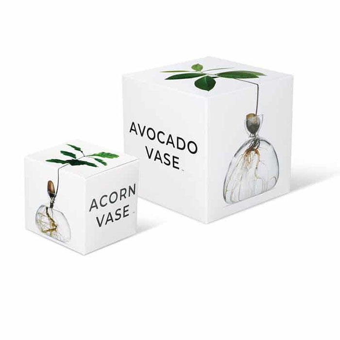 Acorn Vase and Avocado Vase Packaging Boxes