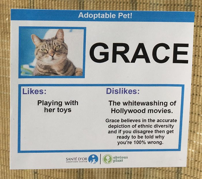 Pet Card Grace