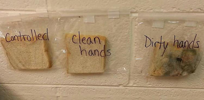 Clean hands science experiment