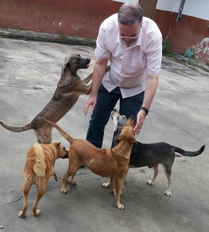 Father João Paulo Araujo Gomes Playing with Four Stray Dogs