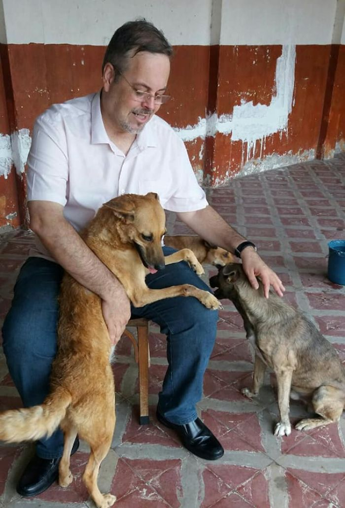 Father João Paulo Araujo Gomes Playing with Stray Dogs