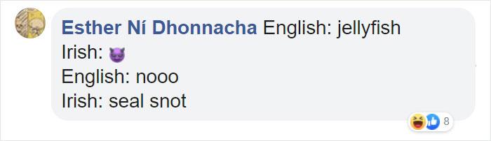 Funny Translation for Jellyfish in Irish