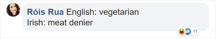 Funny Translation for Vegetarian in Irish