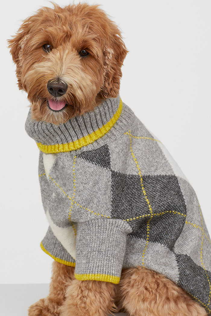 H&M Gray Knitted Dog Jumper