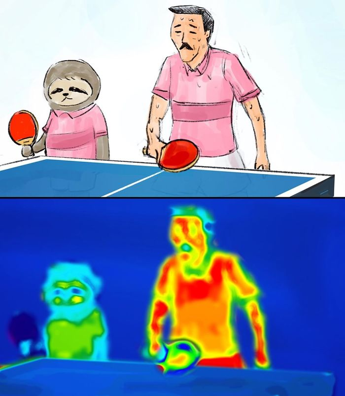Sloth and a Man Playing Pingpong