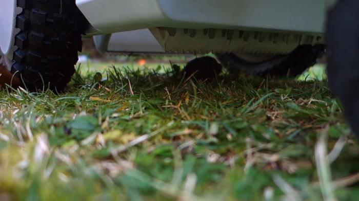beetl autonomous dog poop robot mechanical claw