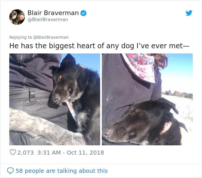 blair braverman sled dog grinch biggest heart