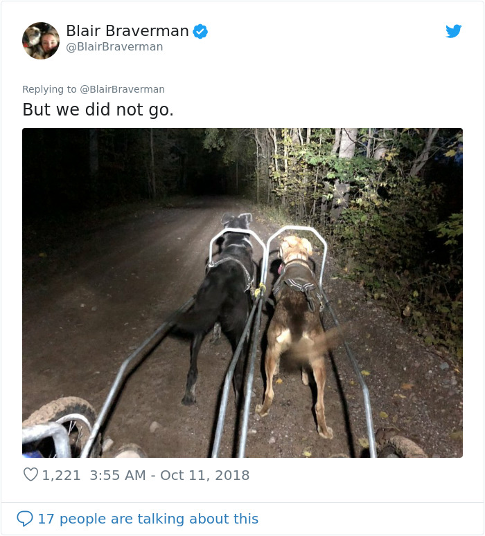 blair braverman disoriented
