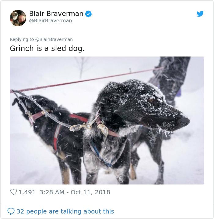 blair braverman sled dog grinch twitter photo