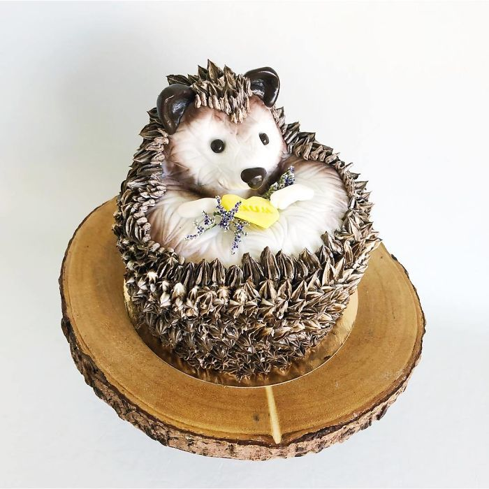 darci amazing cakes cute hedgehog