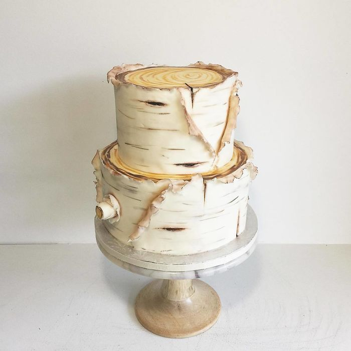 darci amazing cakes tree trunks