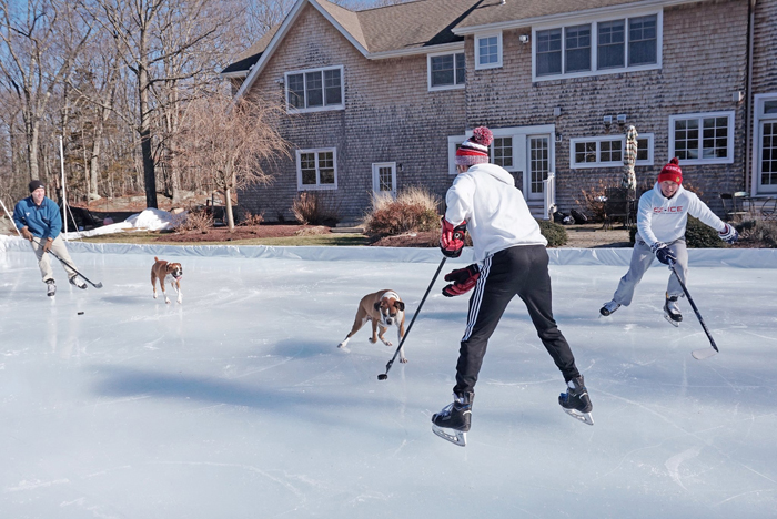 ez ice rink backyard hockey size