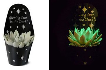 glow-in-the-dark succulents