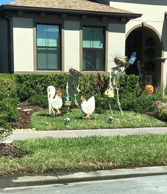 halloween skeletons chicken farmers