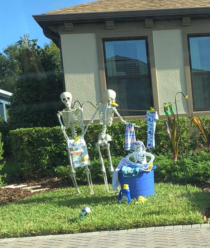 halloween skeletons laundry