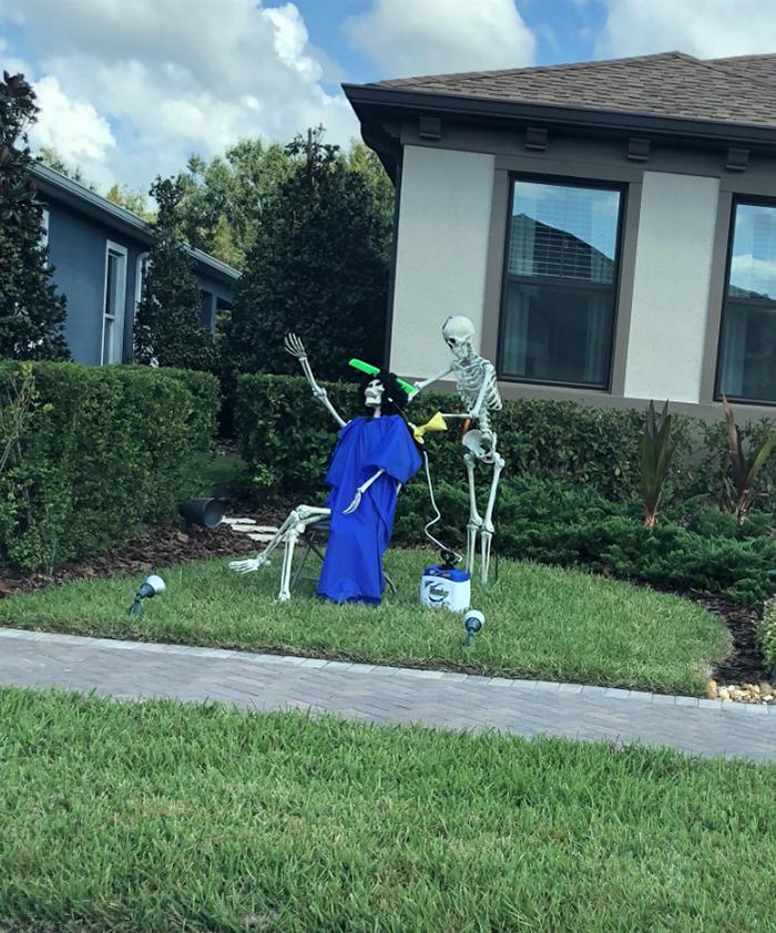 halloween skeletons salon