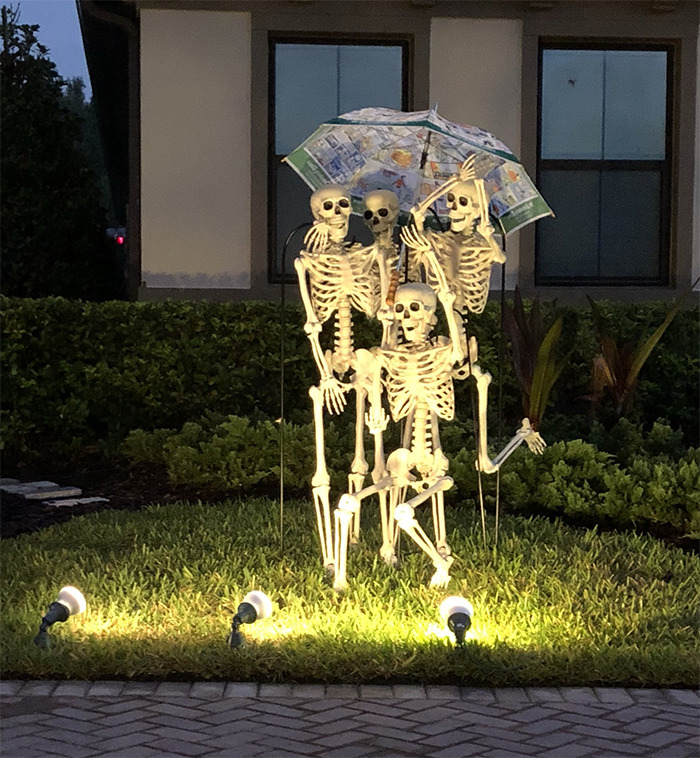 halloween skeletons sharing umbrella