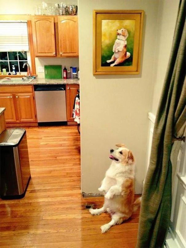 life imitated art sitting dog