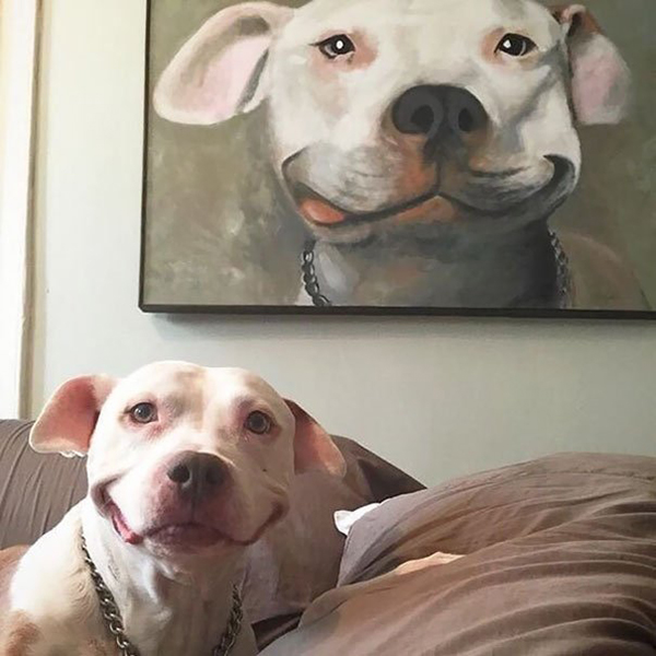 life imitated art smiling dog