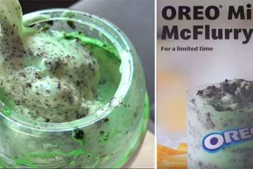 oreo mint mcflurry