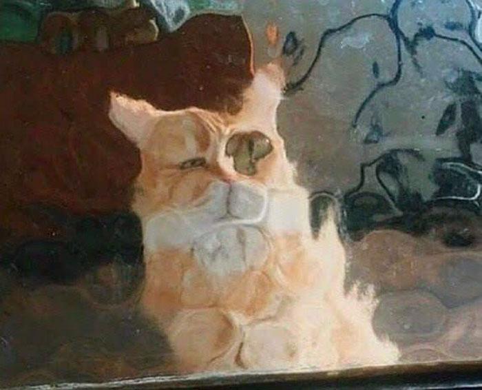 real life pixel cats 4