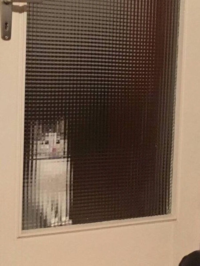 real life pixel cats 7