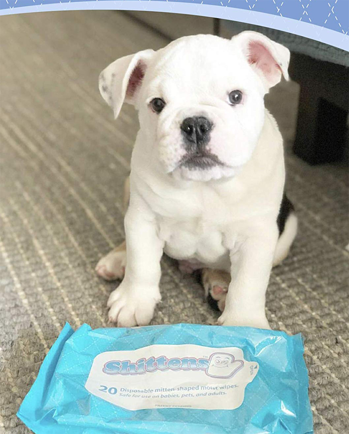 shittens disposable mitten-shaped wipes for pets