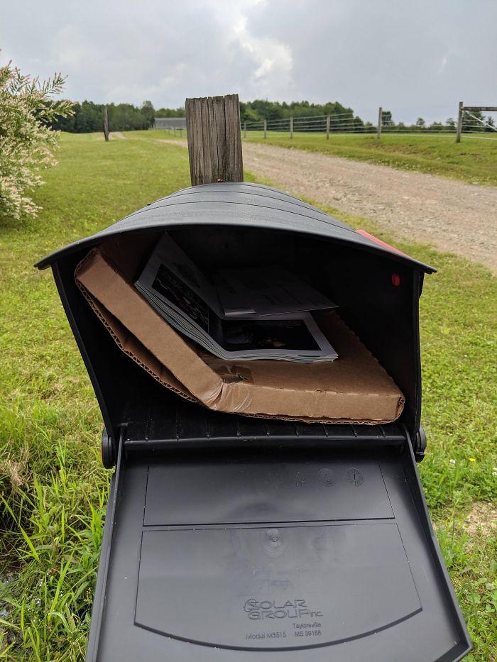 worst delivery drivers bent vinyl