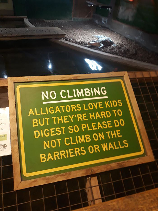 Funny Threatening Signs alligators love kids