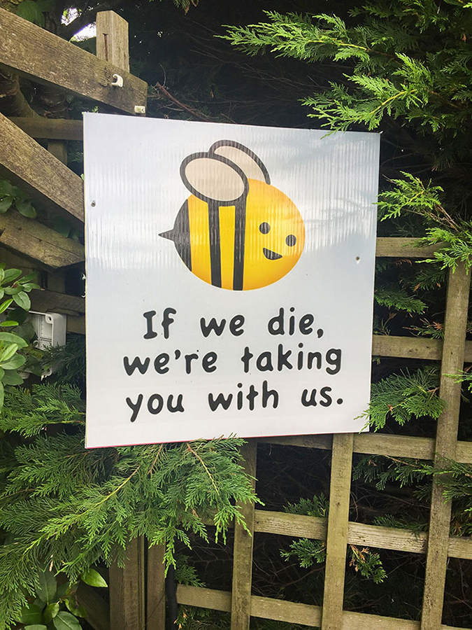 Funny Threatening Signs bees