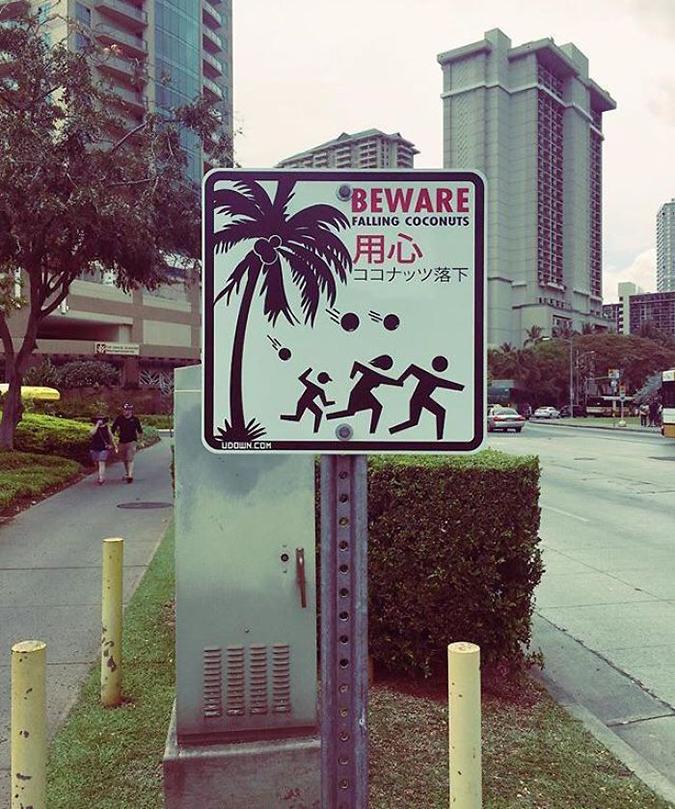 Funny Threatening Signs killer coconuts