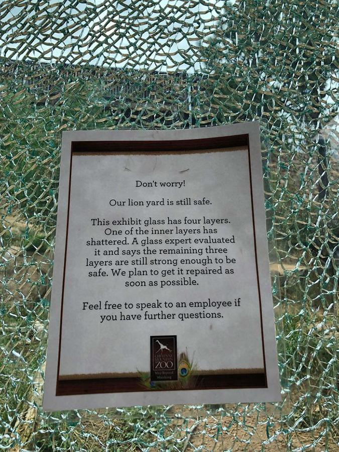 Funny Threatening Signs lion yard