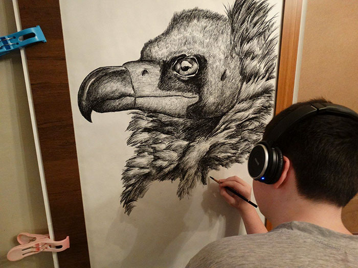 Krtolica Working on His Drawing of an Eagle