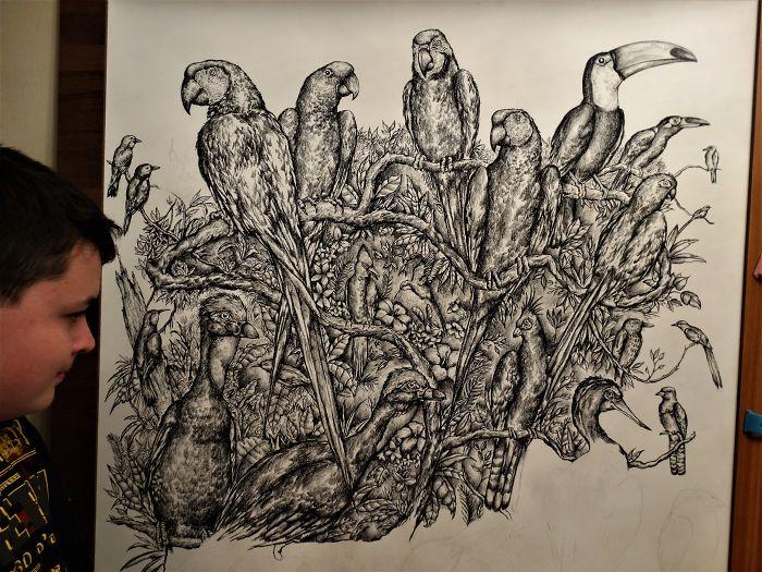Krtolica's Drawing of Various Birds