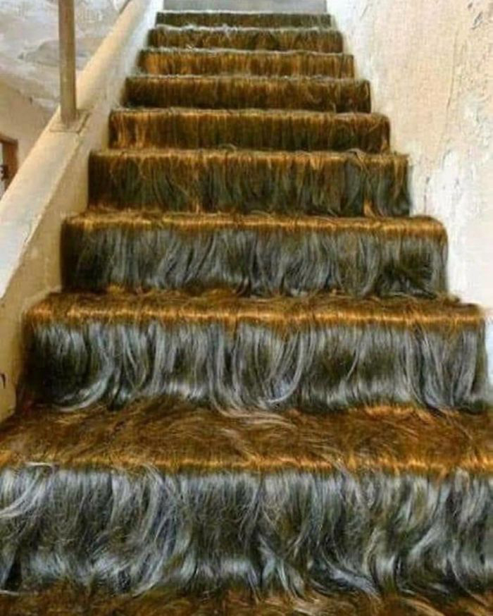 Staircase Covered with Hair