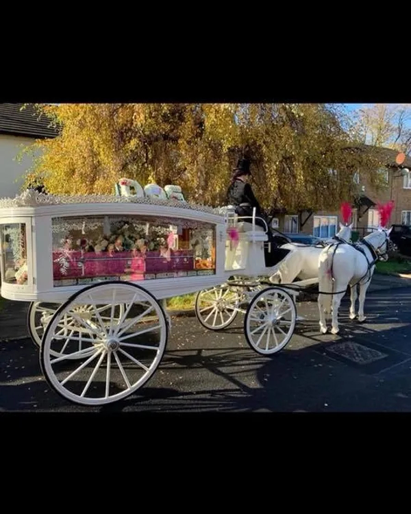 White Horse Drawn Hearse with a Pink Glittery Casket