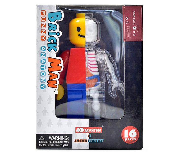anatomical lego brick man box