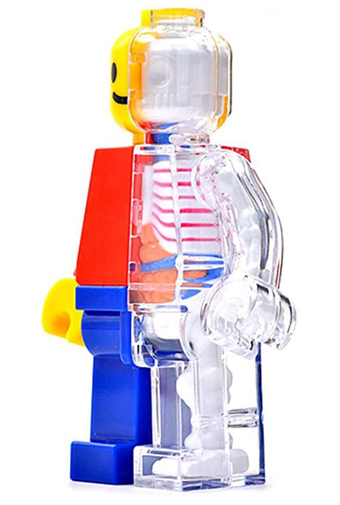 anatomical lego brick man side