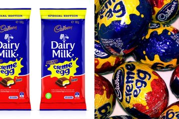 cadbury dairy milk creme egg bar