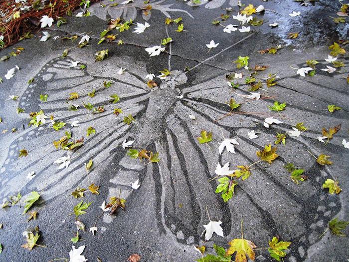 dianna wood neighbor driveway artwork butterfly