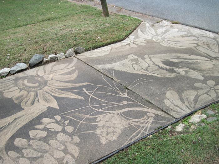 dianna wood pressure washer art flowers butterflies