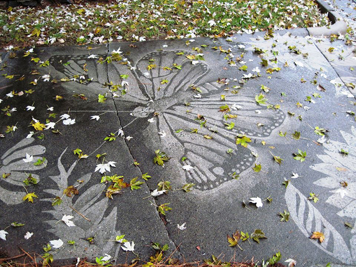 dianna wood pressure washer art neighbor butterfly